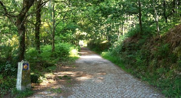 Classic Camino