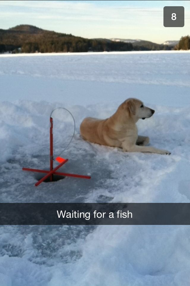 Sierra ice fishing